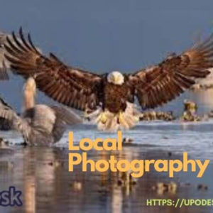 Local Photography